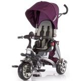 Resigilat: Tricicleta Chipolino Enduro purple