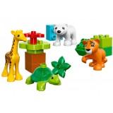 Pui de animale LEGO DUPLO (10801) {WWWWWproduct_manufacturerWWWWW}ZZZZZ]