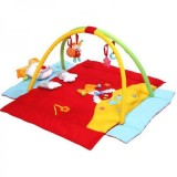 Covoras de joaca Baby Ono 494