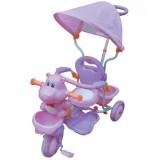 Tricicleta cu copertina Eurobaby Hr210c roz