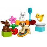 Animalutele familiei LEGO DUPLO (10838) {WWWWWproduct_manufacturerWWWWW}ZZZZZ]