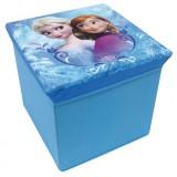 Cutie depozitare Fun House Elsa si Anna