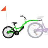 Bicicleta WeeRide Co-Pilot verde