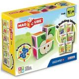 Set constructie Geomag Magnetic Magicube Fructe