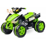 ATV Toyz Raptor 2x6V green