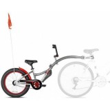 Bicicleta WeeRide Co-Pilot XT gri