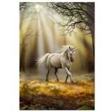 Puzzle Educa Unicorn Anne Stokes 1000 piese