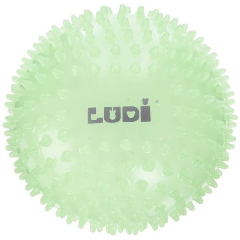 Minge senzoriala Ludi fosforescenta
