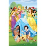 Tapet Walltastic Disney Princess